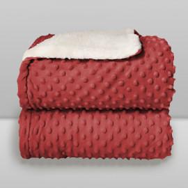 Cobertor Laço Bebê Plush com Sherpa Dots Vermelho